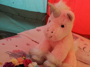 Magical Unicorn Sleepover Party Hire